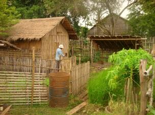 Preparing Chicken Cage